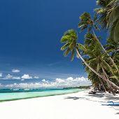 stock photo of boracay  - Tropical beach with palm and white sand Philippines Boracay - JPG