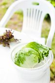picture of spinner  - Salad spinner with iceberg and red lettuce diet concept