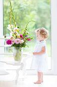 image of girl next door  - Beautiful Toddler Girl Watching Flowers In A Big Vase Next To A Window - JPG