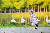 stock photo of baby goose  - Little Happy Baby Girl Running At A River Shore Chasing Wild Geese In An Autumn Park - JPG