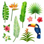 foto of toucan  - Tropical gardens  leaves and flower set with toucan bird isolated vector illustration - JPG