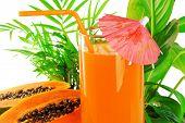 pic of papaya fruit  - papaya fruit and glass of juice and exotic leaves - JPG