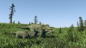 Постер, плакат: two syracosauruses walking in grassland
