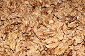 image of diabetes mellitus  - Walnut kernels contain various elements that enhance memory and helps in the treatment of diabetes mellitus - JPG