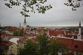 pic of peace-pipe  - Of Tallinn - JPG