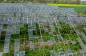 foto of hail  - Abandoned greenhouses damaged and destroyed by the hail - JPG