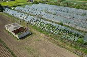image of hail  - Abandoned greenhouses damaged and destroyed by the hail - JPG