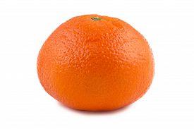 pic of tangelo  - Image of ripen tangerine on white background - JPG