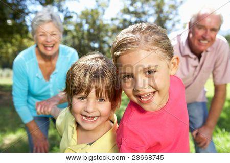 Постер, плакат: Старший пара на страны ходить с внуками, холст на подрамнике