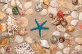 Blue Starfish Lies In The Center Of The Circle , Frame Of Seashells And Stars. View From Above poster