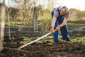 Farmer Working In The Garden With The Help Of A Rake Leveling Plowed Land, On A Sunny Day. Spring, P poster