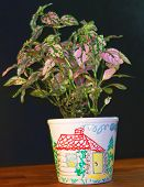 picture of loamy  - Flowerpot it is painted by hands - JPG