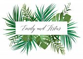 Wedding Floral Invitation, Invite Card. Vector Watercolor Style Exotic Palm Tree Green Leaves, Tropi poster