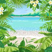 Summer Background With Tropical Plants. Square Floral Frame On Seaside Landscape. Tropic Foliage Bor poster