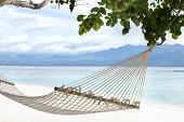 Hammock Hanging Between Trees On A Sandy Beach On A Background Of Azure Bali Sea. Coast Of The Gili  poster