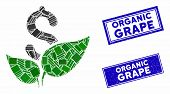 Mosaic Agriculture Startup Pictogram And Rectangle Organic Grape Seal Stamps. Flat Vector Agricultur poster