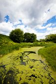 foto of boggy  - small boggy river - JPG