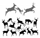 stock photo of deer family  - Deer silhouettes including fawn doe bucks and stags in various poses - JPG