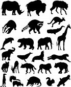 pic of platypus  - Animal Silhouettes Set Wild Mammals Vector illustrations - JPG