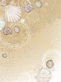 picture of beach shell art  - beautiful stylized sea shells on the brown sand - JPG