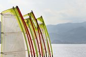 stock photo of deportation  - The sails for windsurfers lined up along the beach - JPG