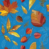 stock photo of elm  - Vector seamless pattern with autumn set leaves nuts tree - JPG