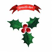 picture of holly  - Christmas holly berry symbol - JPG