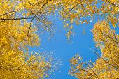 pic of paysage  - Natural background - JPG