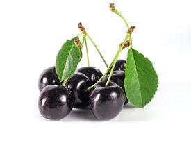 stock photo of black-cherry  - black cherry - JPG