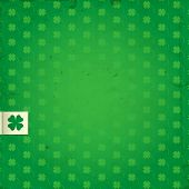 picture of four leaf clover  - St - JPG