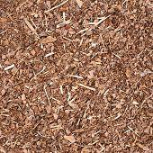 image of fragmentation  - Wooden mulch ground - JPG