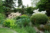 image of conifers  - Beautiful spring garden design with flowering rhododendron and conifers - JPG