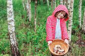 foto of edible  - cute child girl gathering wild edible mushrooms in the forest - JPG