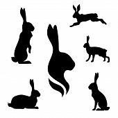 picture of hare  - Hare set of black silhouettes - JPG