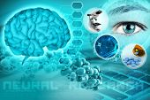 pic of neurology  - human brain and eye in an abstract neurological background - JPG