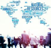 pic of environmental conservation  - Natural Resources Conservation Environmental Ecology Concept - JPG