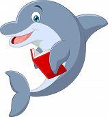 stock photo of dolphin  - Vector illustration of Cartoon Standing little Dolphin holding book - JPG