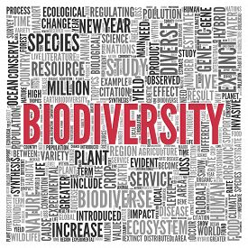 pic of biodiversity  - Close up BIODIVERSITY Text at the Center of Word Tag Cloud on White Background - JPG