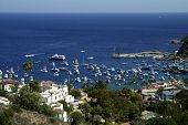 Avalon Harbor On Catalina Island, Ca