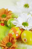 stock photo of easter eggs bunny  - Easter detail with Easter eggs or spring motive - JPG