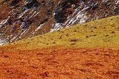 Natural Red And Yellow Mountains In Kyzyl-chin Valley, Also Called As Mars Valley. Altai, Siberia, R poster