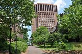 Yale University's Kline Biology Tower