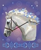 Horse In Bridle, Vector Colorful Realistic Illustration. Portrait Of Running White Horse With Differ poster