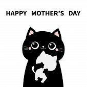 Cat Holding Hugging Little Baby Kitten. Happy Mothers Day. Kittens On Hands. Kitty Hug. Funny Kawaii poster