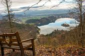 View Of Lake Bled In Slovenia From The Viewpoint On Mount Velika Osojnica Next To A Wooden Bench On  poster