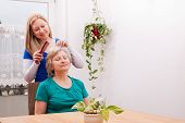 Young Woman Combing Seniors Hair