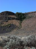pic of sagebrush  - The Palisades is a central Washington canyon filled with rock mesas and sagebrush. ** Note: Slight blurriness, best at smaller sizes - JPG