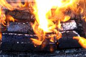 wooden briquettes for BBQ