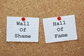 picture of shame  - Wall of Shame or Hall of Fame choices on a cork notice board - JPG