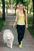 picture of dog park  - Girl with a white dog walks in the park - JPG